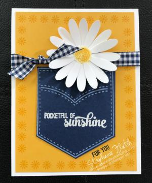 Daisy Delight bundle, Pocketful of Sunshine bundle, www.dazzledbystamping.com