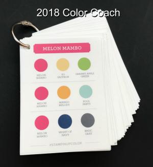 2018 Color Coach