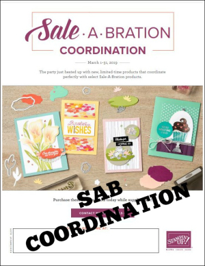 SAB Coordination flyer pic