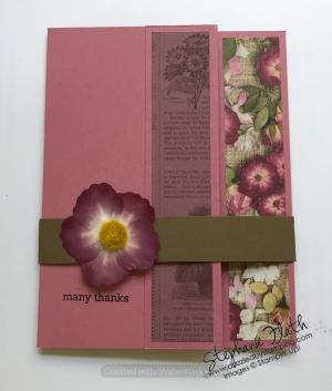 Itty Bitty Greetings, Pressed Petals [DSP & Washi Tape], www.dazzledbystamping.com